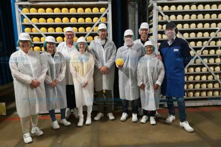 El gallo azul, de los mejores quesos de bola que produce Holanda