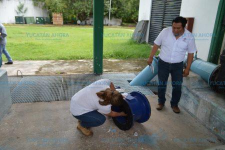 Toma precauciones: detendrán ocho horas la planta de agua Mérida I