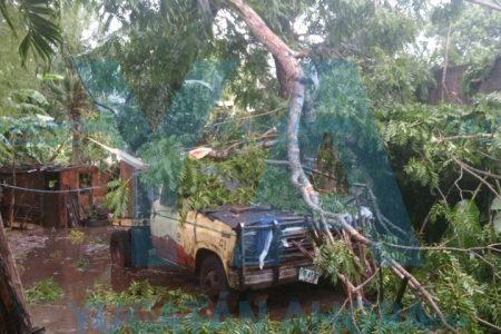 Turbonada causa daños en amplia zona de Yucatán