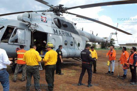 Controlan incendio forestal en la Reserva El Palmar de Celestún