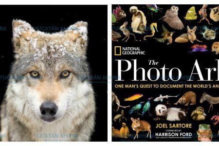Llegará a Mérida la exposición Photo Ark de National Geographic
