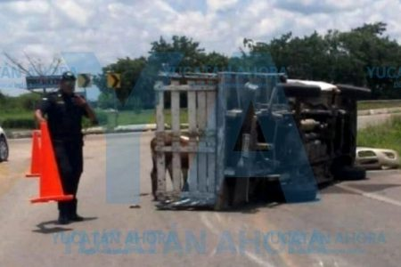 Vuelca con cuatro becerros en un puente de la Mérida-Tizimín