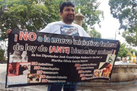 Denuncian que diputados de Morena quieren proteger los torneos de lazo