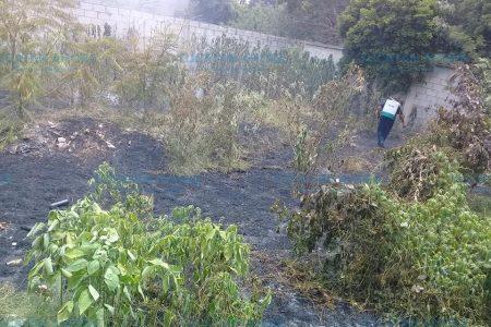 Voladores propician incendio en Chuburná