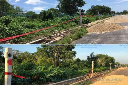 Vecinos de Residencial San Antonio Hool-Dzityá salvan área verde
