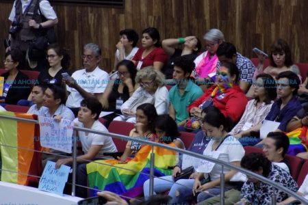 Activistas pro matrimonio igualitario apuestan a que la tercera es la vencida