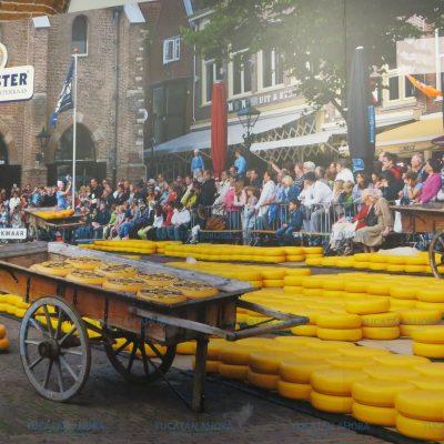 Queso de bola: campesino en Holanda, rey de las mesas en Yucatán