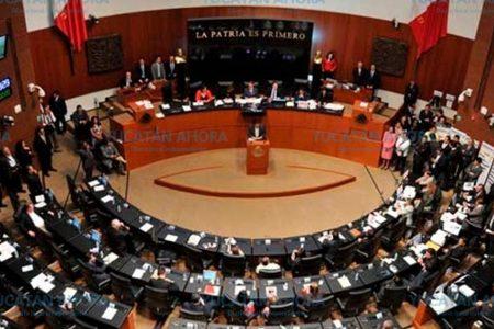 La Corte invalida decreto de Yucatán como zona libre de transgénicos
