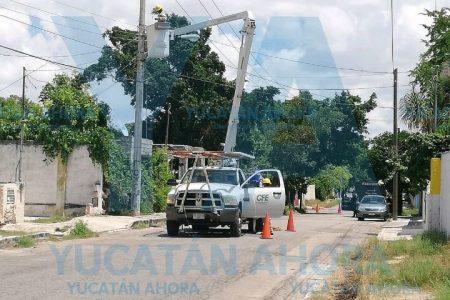 Rinde frutos presión social en San José Tecoh
