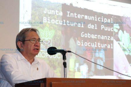 Debaten costos-beneficios del Tren Maya en Yucatán