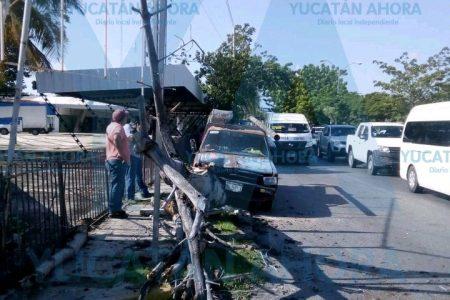 Taxi colectivo provoca choque y un árbol paga las consecuencias