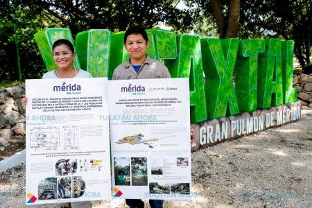 Protegen vestigios arqueológicos en el parque de Xoclán