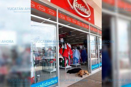 Dejan a caninos disfrutar del aire acondicionado en conocida tienda