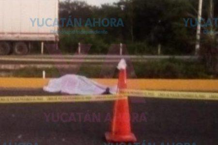 Trailero muere atropellado en el tramo Poxilá-Xtepén