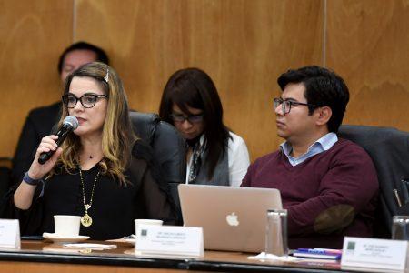 México necesita más inversión, no más impuestos: Cecilia Patrón
