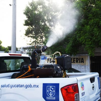Esperan que el frente frío 12 'mate' al dengue en Yucatán