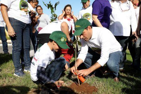Ya quisieran otros los arbolados fraccionamientos de Yucatán: Vila