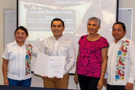 Las abejas mayas vuelan a un Congreso Mesoamericano