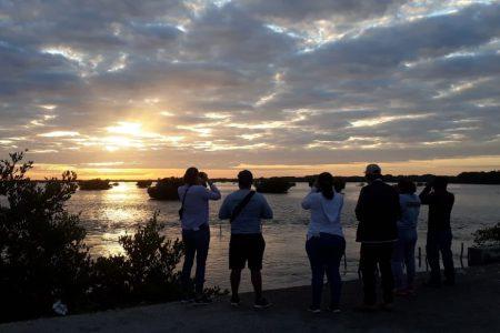 Con gran participación realizan el maratón de las aves en Yucatán