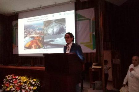 Tren Maya, carente de racionalidad ambiental, financiera, fiscal y económica: Cuadri