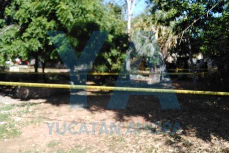 La muerte lo encuentra en la vía pública de San José Tecoh II