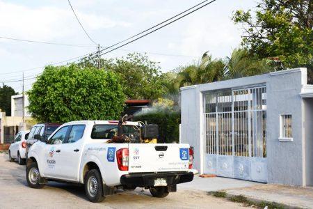 Sin participación ciudadana no se acaba el mosco del dengue
