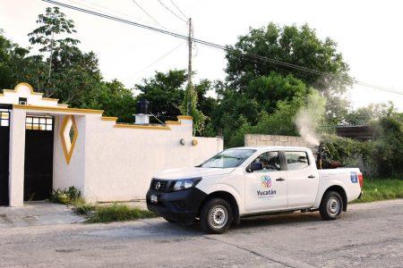 Fuerte combate al dengue y a la influenza en Yucatán