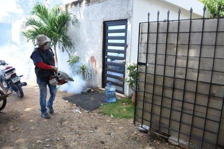 SSY reporta avances en el combate al dengue en Yucatán