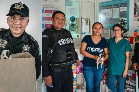 Agentes de SSP rescatan cachorro abandonado en una caja y le consiguen hogar