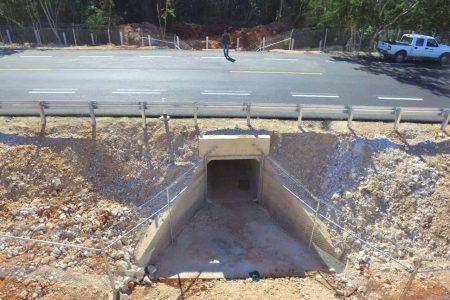 Concluye ampliación y modernización de la vía Mérida-Chetumal