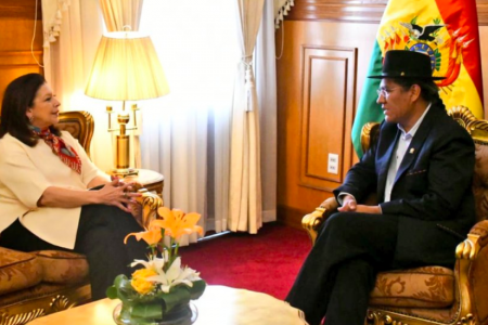 Bolivia declara 'persona non grata' a embajadora de México