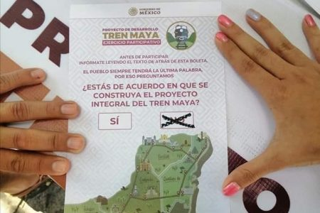 'Salvemos la Selva' pide que se anule la consulta del Tren Maya