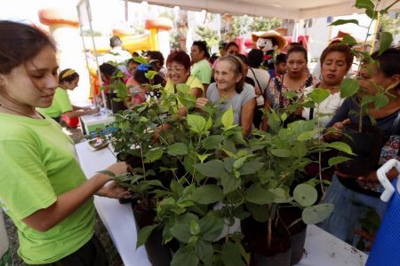 Inauguran tercer Mega Punto Verde, en San Marcos Sustentable