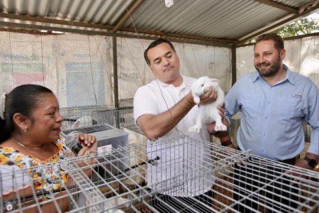 'Círculo 47', certeza de calidad para productores y consumidores