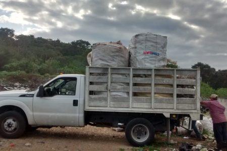 Frente común para la colecta de envases de agroquímicos