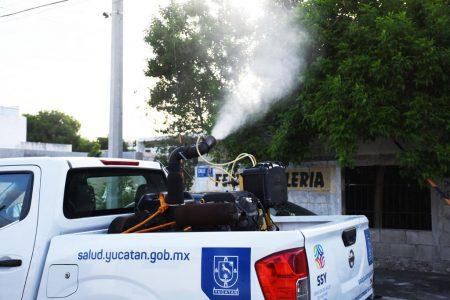 Yucatán impuso récord nacional en dengue: creció 23 veces más que en 2018