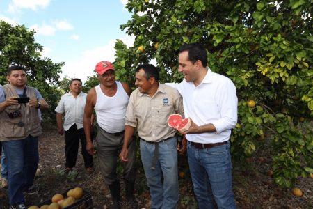 Mauricio Vila inicia el año con gira por el sur de Yucatán