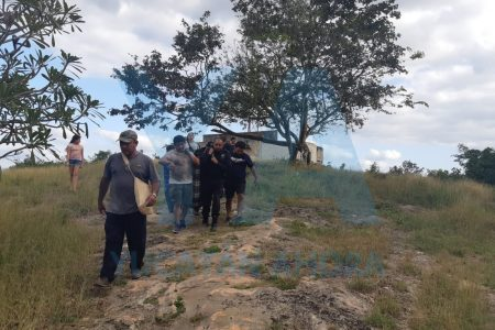 Abejas atacan a turistas en grutas de parador en el camino a Uxmal