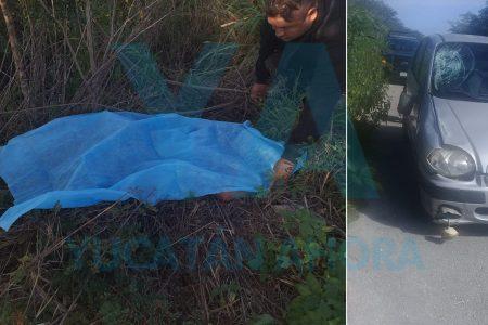 Muere atropellado un ciclista; el culpable huye, pero encuentran su auto