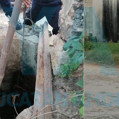 Rescatan a dos perros que cayeron a un pozo de 10 metros de profundidad
