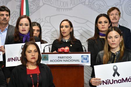 """""""Ni una más"""", advierte la diputada Cecilia Patrón"""
