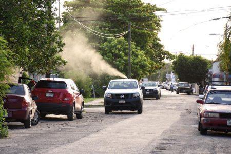 Participación ciudadana, clave para mantener a raya dengue, zika y chikungunya