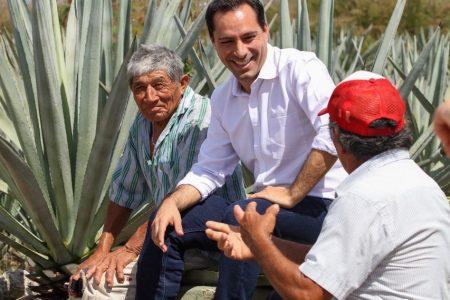 Mauricio Vila escucha e impulsa a los productores henequeneros