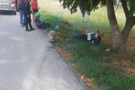 Indigente atropellado: se atravesó en el camino de un motociclista en el Periférico