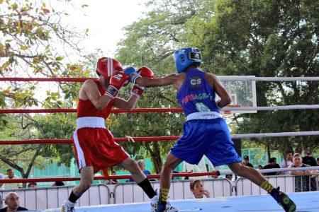 Boxeadores se acercan a los Juegos Nacionales