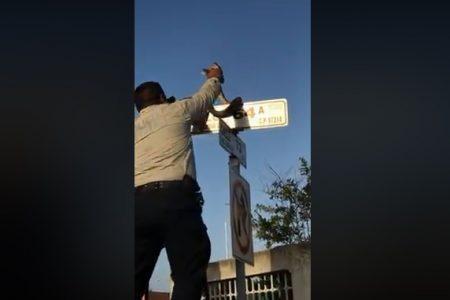Boa se sube a un letrero de nomenclatura a tomar el sol, en Ciudad Caucel
