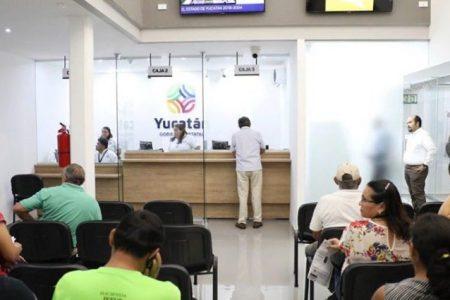 A partir de hoy descuentos en trámites vehiculares en Yucatán