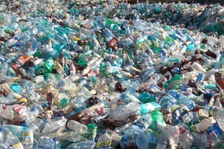 Inmediata respuesta del Ayuntamiento a una queja de recicladores meridanos