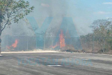 Incendio consume 50 mil metros cuadrados de maleza en la Mérida-Progreso