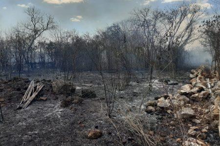 Se calienta Yucatán: 100 incendios en diversos puntos del estado